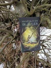 """Det er Louise Floor Frellsens novelle """"Bag masken"""" , som har dannet grund for forsiden af Hvad skoven skjuler. Illustrationen er desuden lavet af Søren Klok."""
