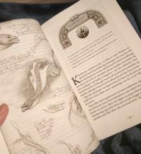 Bøgerne i Stormlysfortællingerne indeholder også flotte tegninger og kort.